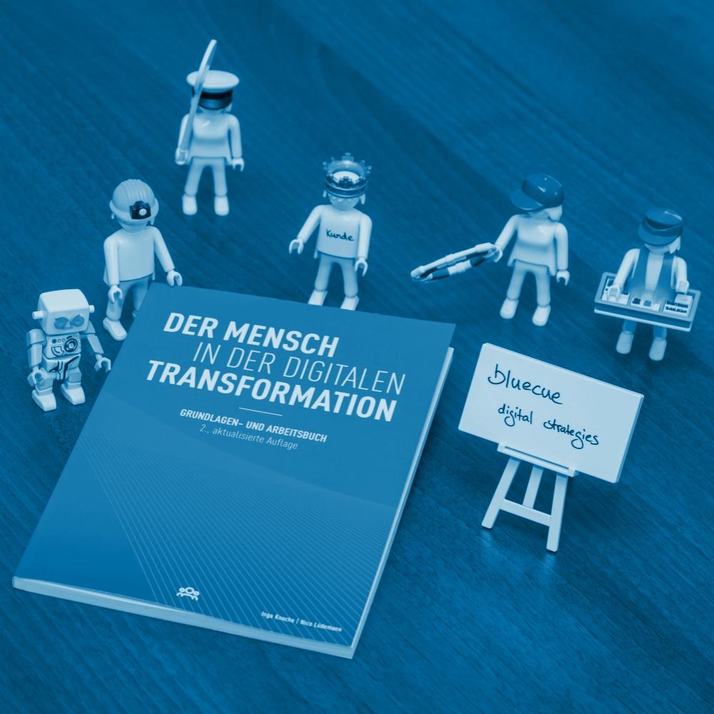 Digitale Kompetenzen » bluecue digital strategies