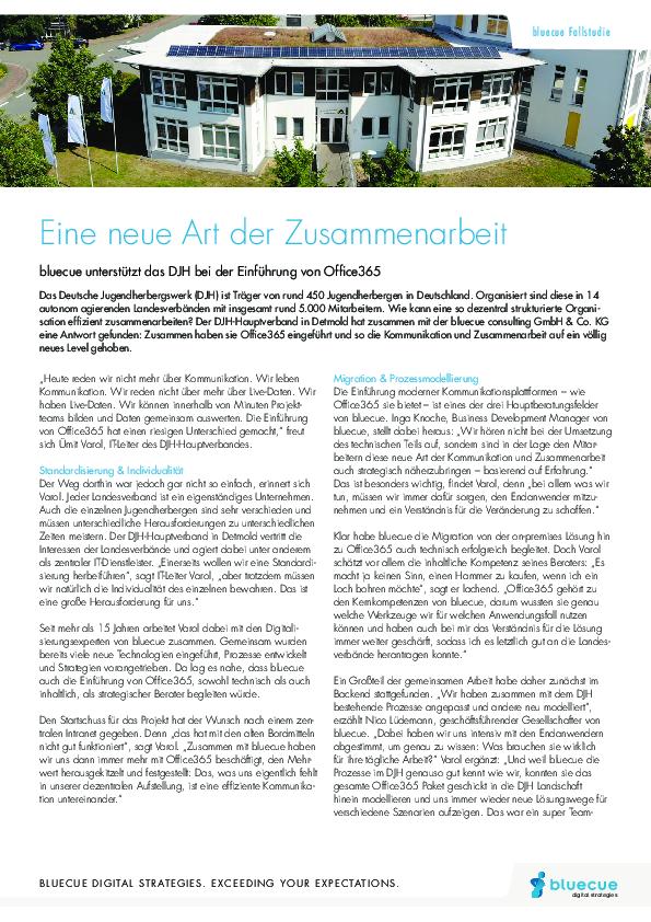 bluecue-Fallstudie-DJH365.pdf
